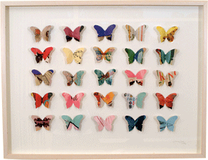 Aw_25_butterfly